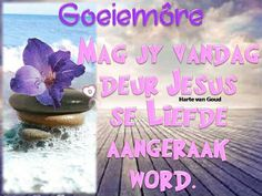 Good Morning Wishes, Good Morning Quotes, Lekker Dag, Goeie Nag, Goeie More, Afrikaans, Words, Amen, Bible