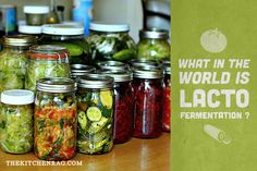 What in the world is lacto-fermentation?
