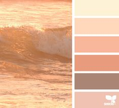 { color crash } image via: @thedreamlife_design