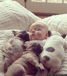 Ce bébé qui dort avec ces petits bulldogs va vous faire craquer !