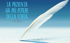 #Metamorphosya #CarloPrevale #pazienza #forza #lafilosofiadelcambiamento