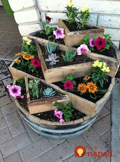Ideas How To Use Old Barrel For Planting Flowers Using a whiskey barrel planter is an ingenious way of container gardening. What…Using a whiskey barrel planter is an ingenious way of container gardening. Flower Planters, Flower Pots, Flower Containers, Succulents Garden, Planting Flowers, Flowers Garden, Spring Flowers, Succulent Pots, Flower Gardening