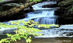 My first time out trying to capture water falls. R ... by Doreen Madeira Matzerath - Photo 121672051 - 500px