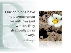 Our opinions have no permanence; like autumn and winter, they gradually pass away.  ~Zhuangzi