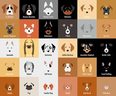 Minimalist Dog Breeds Illustrations that are really cute