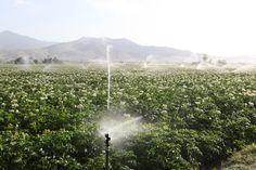Huge Aquifers Discovered Deep Under Drought-Stricken California   D-brief