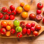 How to plant and care for tomatoes Tomato Seedlings, Tomato Plants, Root Meaning, Plant Diseases, New Roots, Juicy Fruit, Compost, Tomatoes, Blog
