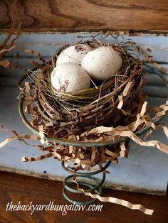 Loving the nest in the old spring. Google Image Result for http://thebackyardbungalow.com/wp-content/uploads/2012/08/thebackyardbungalow.com-bed-spring-wall-decor-nest.jpg