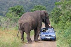 Traffic jam ahead.