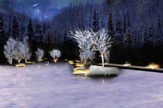 軽井沢に自然の恵みが創り出す森のスケートリンクが誕生