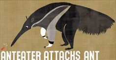 lickens:  New 'Anteater' print from my 'A is for' series....