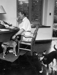 Ian Fleming, hard at work at Goldeneye, 1964.
