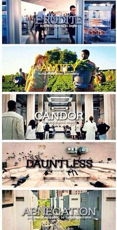 The factions. Dauntless = Gryffindor, Abnegation + Amity = Hufflepuff, Erudite = Ravenclaw, Candor + Erudite = Slytherin.
