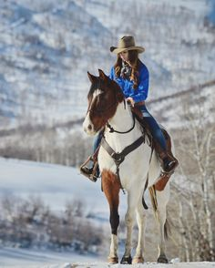 Stunning paint horse, horseback riding in the snowy mountains.