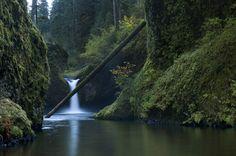Eagle Creek Trail, Oregon   12 Hiking Trails That Will Take Your Breath Away. @Reeni Lindblöm