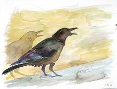 Ravens Shadow by Carolyn Doe