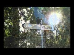 Son Vida Immobilien | Only Exclusive Mallorca