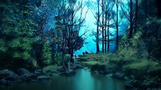 A forest is a large area where trees grow close together. Parts of the forest are still dense and inaccessible. Water is a clear thin liquid that has no color Sunset Background, Art Background, Thank You Wallpaper, Tree Diagram, Fantasy Forest, Forest Wallpaper, Garden Pictures, Tree Art, Abstract Backgrounds