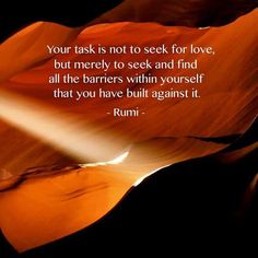 Your task is not to seek for love, but merely to seek and find all the barriers within yourself that you have built against it. -Rumi