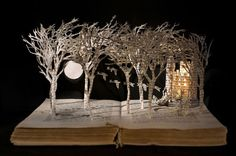 British artist Su Blackwell cuts out images from books to create fantastical 3D Fairytale dioramas...