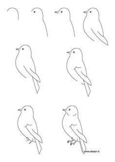Adım adım bir kuş çizmek için.  (Büyütmek için tıklayın, sonra bir sayfaya sığması için% 85 küçültün.) (Sanat, çocuklar, çizim dersi)