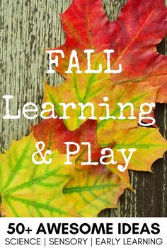 Fall sensory play ideas for science, bins, literacy, math, fine motor and more.