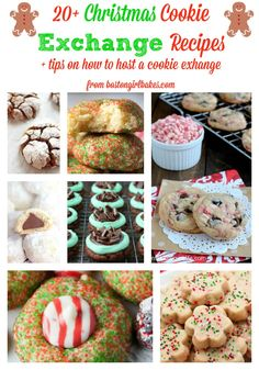 20+ Christmas Cookie Exchange Recipes
