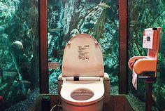 21 beste afbeeldingen van rare badkamers en toiletten home decor
