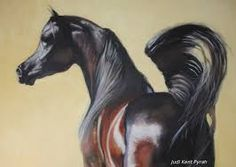 Image result for horse art by Karina peacemaker
