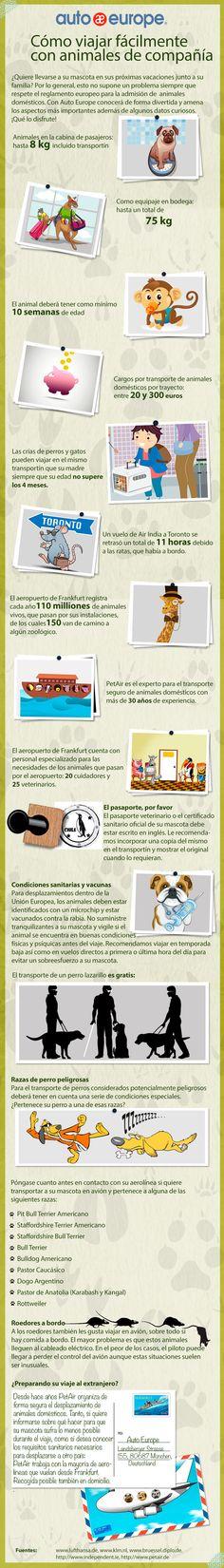 Infografía: Cómo viajar fácilmente con animales de compañía - Consulte nuestras infografías aquí: http://www.autoeurope.es/go/infografias/