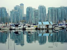 View of Vancouver waterfront from Stanley Park, fall 2012