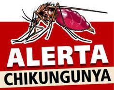 Diario Vallevirtual: Sigue campaña contra el chinkungunya