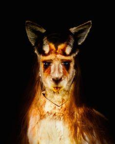 Stella Cadente présente Instinct, une exposition multisensorielle - Actualité : Expos (#460632)