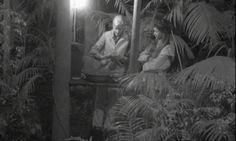#Dschungelcamp Tag 11: So war der elfte Tag im #Dschungel #IBES #RTL › Stars on TV