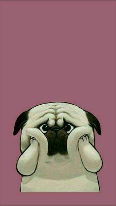 Wallpaper Iphone - Funny wallpaper iPhone - Wallpaper World Cute Dog Wallpaper, Tier Wallpaper, Iphone 6 Wallpaper, Animal Wallpaper, Tumblr Wallpaper, Wallpaper Backgrounds, Seagrass Wallpaper, Paintable Wallpaper, Trendy Wallpaper