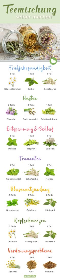 Teemischungen selber machen – die besten Mischungen A homemade tea blend relieves many ailments. You will find many healthy (wild) herbs for this in nature – or you can grow them yourself. Avocado Smoothie, Green Tea Detox, Detox Tea, Easy Smoothie Recipes, Detox Recipes, Detox Foods, Homemade Tea, Health Cleanse, Herbs