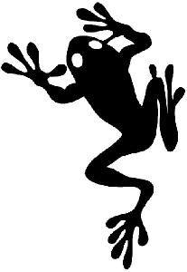 Frog Tat on foot!