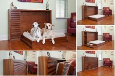 Murphy's Paw Design: Cool Fold-Out Dog Bed - http://www.amazinginteriordesign.com/murphys-paw-design-cool-fold-dog-bed/