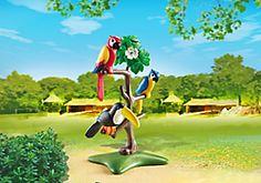 Perroquets et toucan