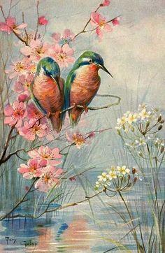 Mary Golay - Cartes Postales Anciennes - Oiseaux 'Colibris' - Années 1900
