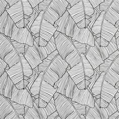 White and black wallpaper white black wallpaper black and white wallpaper black and white wallpaper pattern . white and black wallpaper Textures Patterns, Print Patterns, Black And White Wallpaper, Black White, Brown Wallpaper, Palmiers, Fabric Houses, Red Design, Modern Wallpaper