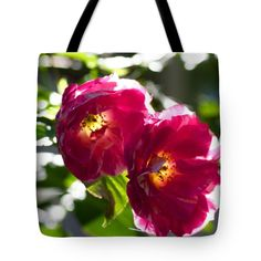 "Backlit Roses Tote Bag by Anna Porter (18"" x 18"").  The tote bag is machine washable, available in three different sizes, and includes a black strap for easy carrying on your shoulder.  All totes are available for worldwide shipping and include a money-back guarantee."