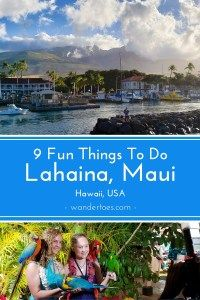 Headed to Maui looking for Things To Do in Lahaina? I've visited the town on many trips to Maui, so here's some help figuring out What To Do in Lahaina! Trip To Maui, Hawaii Vacation, Maui Hawaii, Hawaii Life, Usa Travel Guide, Travel Usa, Travel Tips, Travel Info, Canada Travel