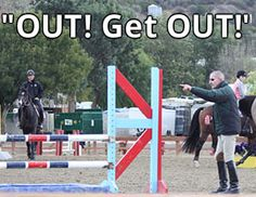 "11 reasons to be thankful for George Morris ""the grumpy cat of the equestrian world"" hilarious!"