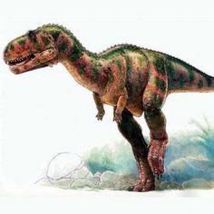 Как выглядели динозавры-хищники? Реконструкция абелизавра