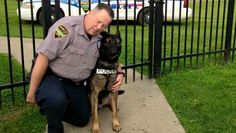 Thousands Donate To Retired Officer Who Wanted To Buy His K-9 Partner – UPDATED - A retired officer offered to buy his K-9 partner, Ajax, but the city wouldn't let the dog be sold without going to auction. The officer raised over $65,000 to buy his partner ....