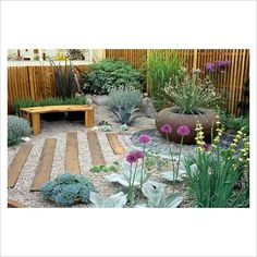 sucullents idea mini garden: Gravel garden with timber bench and large rusty container