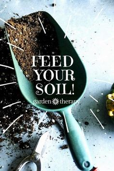 The secret to growing the healthiest most beautiful plants is right in your backyard! Feed your soil! From Elizabeth Murphy, author of the book, Building Soil: A Down-to-Earth Approach: Natural Solutions for Better Gardens & Yards. Compost Soil, Garden Compost, Garden Soil, Edible Garden, Lawn And Garden, Vegetable Garden, Garden Plants, Planting Plants, Sun Garden