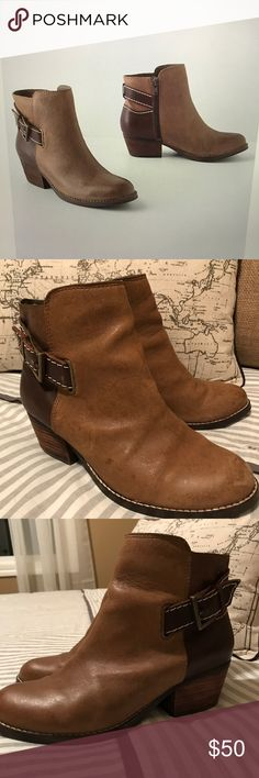 """Seychelles Two-Tone Ankle Boots Adorable and versatile leather two-tone boots with side zippers and faux buckles. 2"""" wooden heel. Great cushion/ support unlike many booties. Worn but still in great shape. Size 7 but run big so will fit 7 1/2 also. Seychelles Shoes Ankle Boots & Booties"""