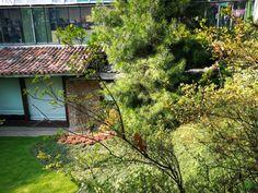 Bonsai, Cabin, House Styles, Home Decor, Decoration Home, Room Decor, Bonsai Trees, Cottage, Interior Decorating
